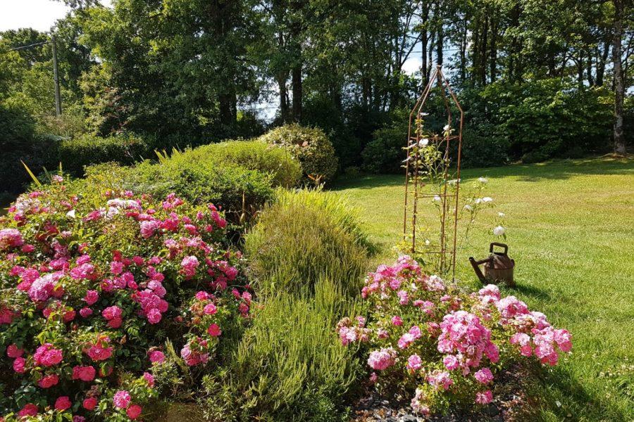 LArbre-Voyageur-maison-dhôtes-8-le-jardin