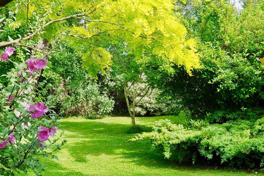 Parc luxuriant au gîtes de La Mulonnais, gîte de charme de Bretagne©-Celine-Davoux