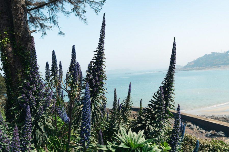 L'îlot de Lancelot vue plage Trestaou
