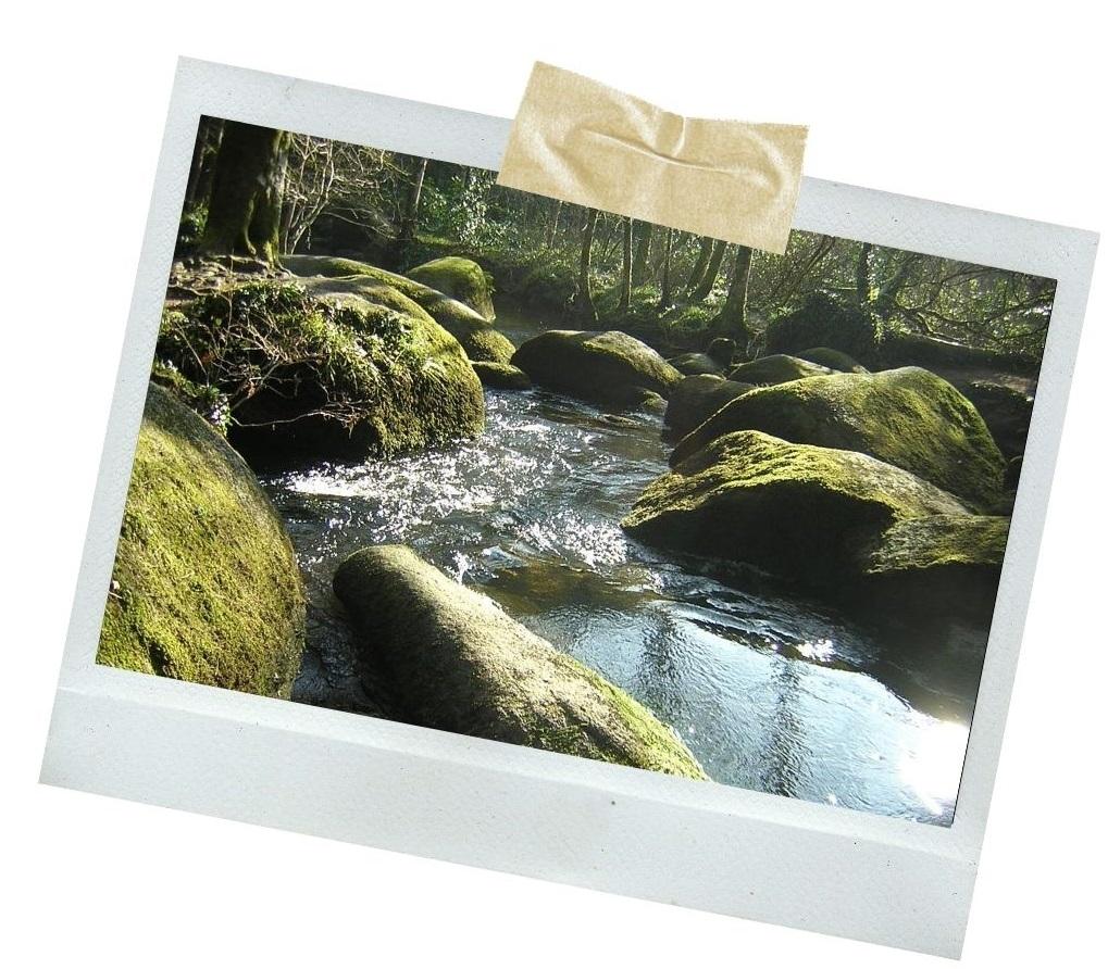 forêt de Huelgoat bretagne