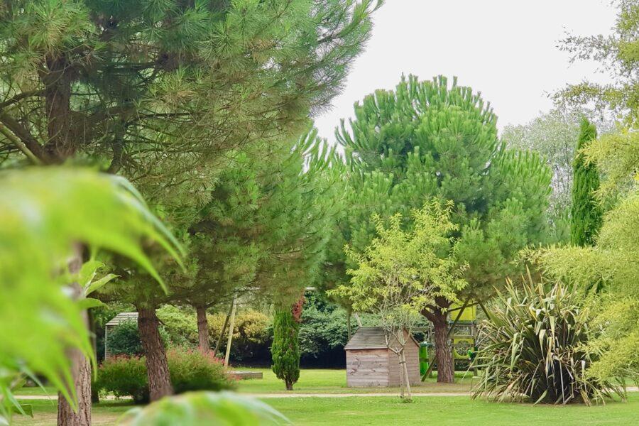 Espace sport nature et parc enfants, pour le plaisir des grands et des petits ! (cabanes, toboggans, jeux de pétanque, ping-pong…)